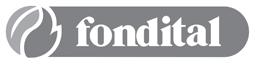 Pièces détachées pour chaudières Fondital